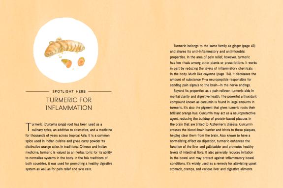 Nature's Remedies Book: Turmeric