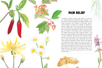 Nature's Remedies Book: Pain relief