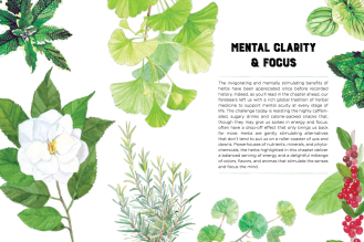 Nature's Remedies Book: Mental clarity and focus